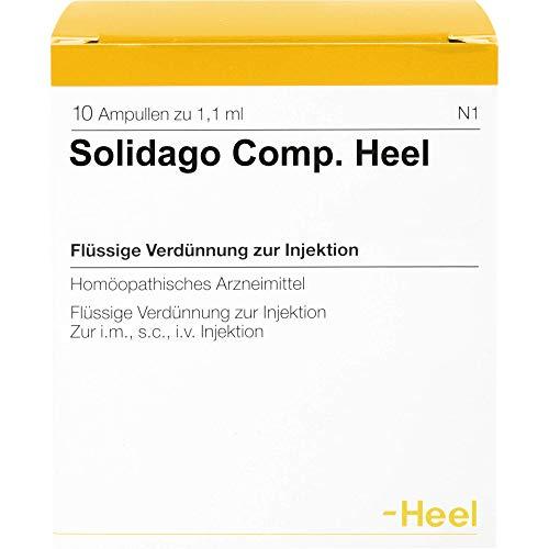Solidago comp. Heel Ampullen, 10 St. Ampullen