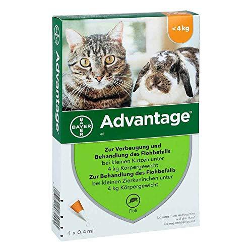 ADVANTAGE 40 mg Lsg.f.kl.Katzen/kl.Zierkaninchen 4X0.4 ml